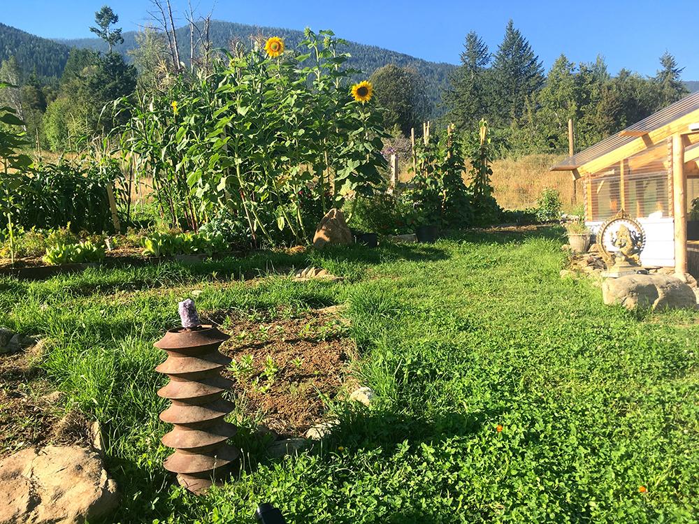 EXPLORE - Our Garden At Sunshine Bay Retreat