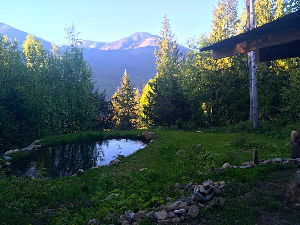 The Meditation Pond At Sunshine Bay Retreat